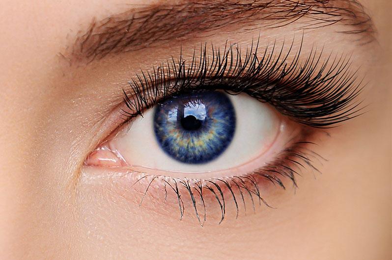 H3 Hair Salon Eyelash Tinting Services